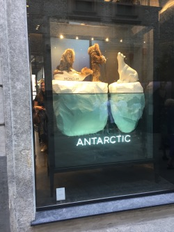 Moncler sells fur coats, so it's only appropriate that their mini-mannequins are in the arctic.